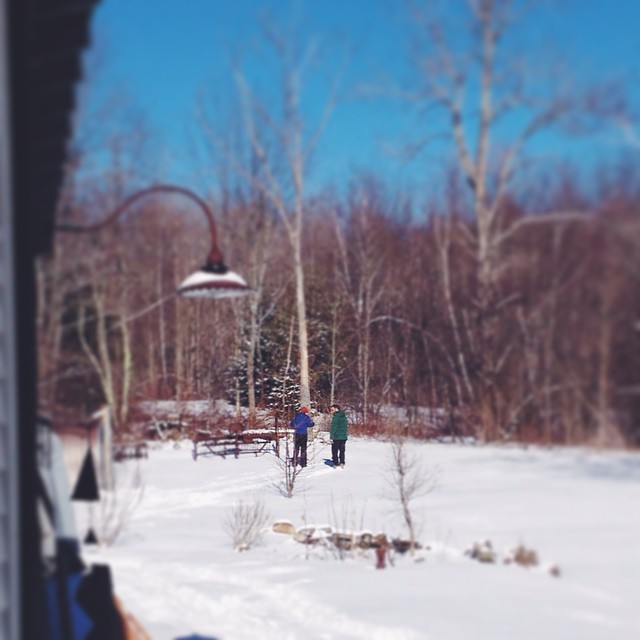 It's a good day for learning to xc-ski. #207gram #maine