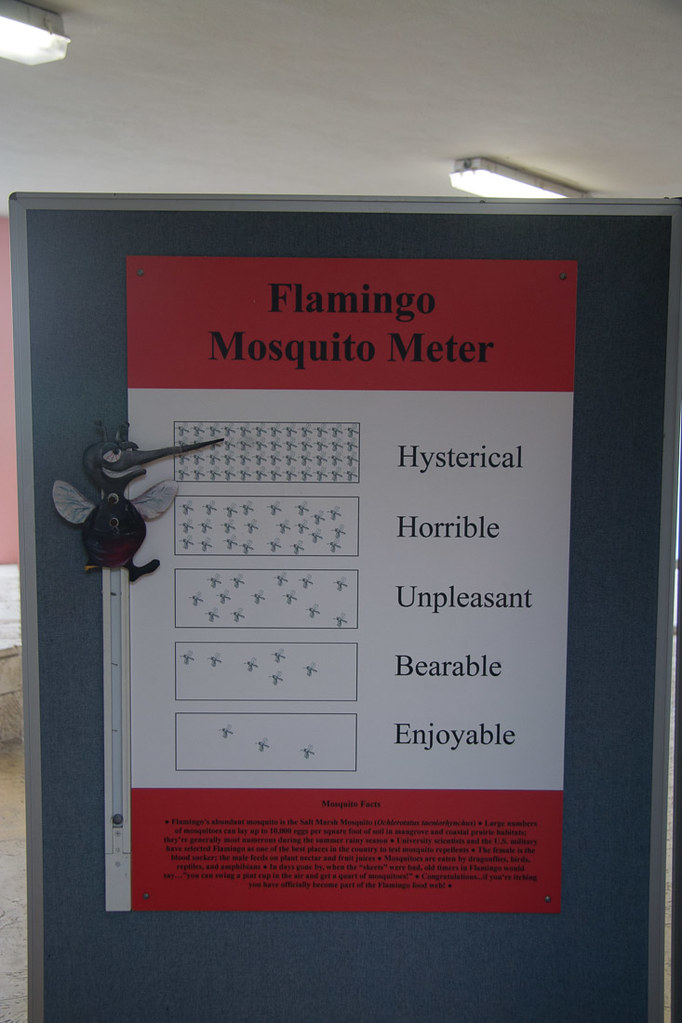 Mosquito Meter: Hysterical, at Everglades National Park