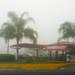 Carretera San Luis a Rioverde - SLP México 140224 075813 S4 por Lucy Nieto