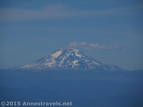 Mt. Rainier is visible from the top of Lookout Mountain and the trail...it looks like it's smoking a bit today...! Mount Hood National Forest, Oregon