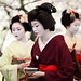 Traditional Tea Party in Kitano Shrine