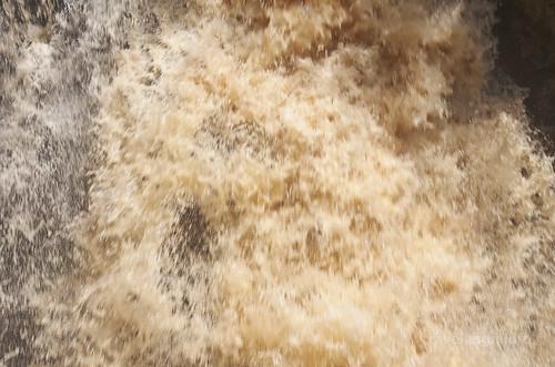 【写真】2015 世界一周 : イグアスの滝・ロワートレイル(1)/2020-09-13/PICT7487