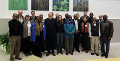 Participants of the Forages for Africa meeting