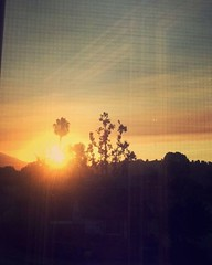 Through the screen.  The real is unseen.    #sunrise #bedroom