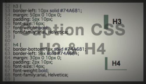 H3_H4tag_eye