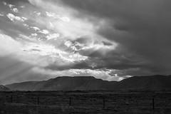 219 365+1 2016 Stormy Montana