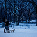 New York Central Park 27inch of Snow Young Love by Dan - DB Photography