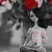 Untitled by Lenician-Terran-Dolls