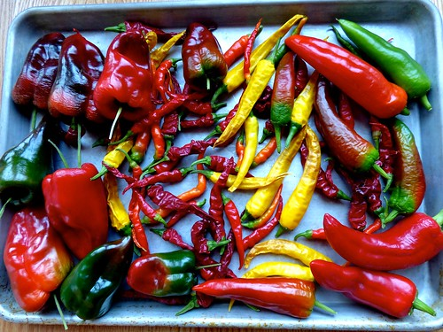Peppers by Meade