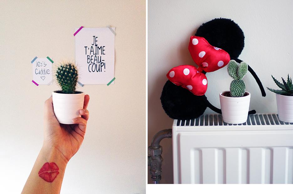 POSE-cactus-chilling-2