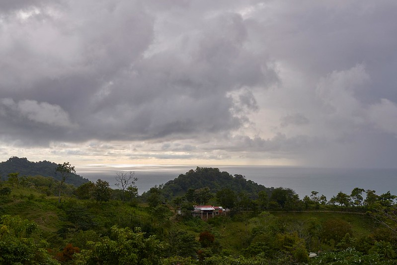 Ocean view -