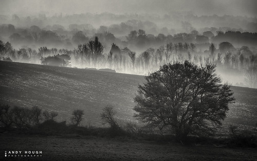 trees england mist monochrome rural countryside blackwhite unitedkingdom sony scenic wallingford a77 southoxfordshire sonyalpha andyhough slta77 andyhoughphotography