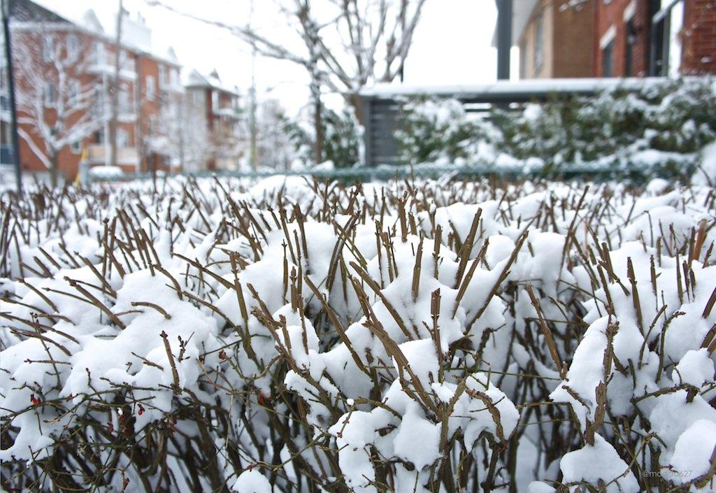 anteketborka.blogspot.com, blanc 8