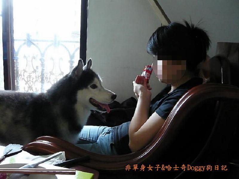 Doggy歡迎光臨03
