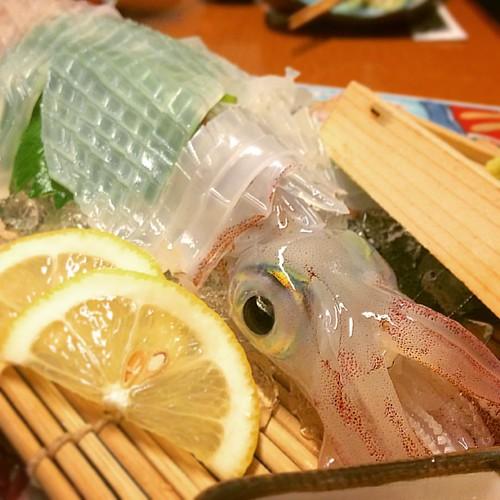 ヤリイカの活け造り☆  #博多 の楽しみ❤️ #歯応え ある! #生きてるよ  #刺身 #活け造り #イカ #ヤリイカ  #新鮮 #美味しい #幸せ  #yummy #japanesefood #sashimi #squid