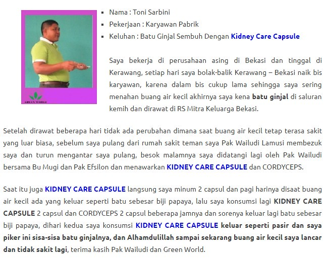 Harga Kidney Care Capsule