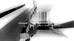 Steps Steps And Staircase Architecture Blackandwhite Bw Contrast Structures & Lines Structure