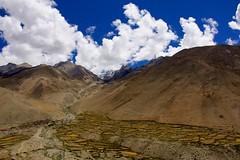 Tibet, cultivos / Crops