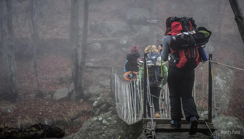 nebbia nel bosco sul sentiero per il rifugio della Balma
