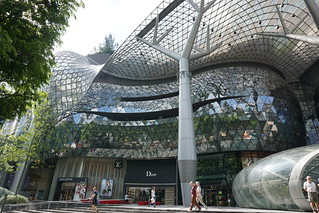 Orchard Rd.