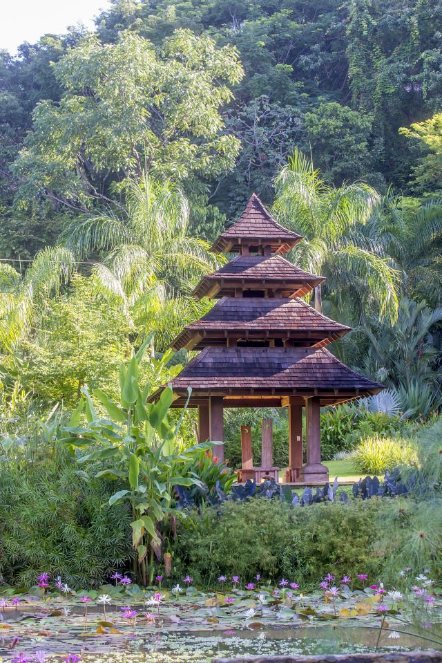 Pond side Pagoda surrounded by lush plantings