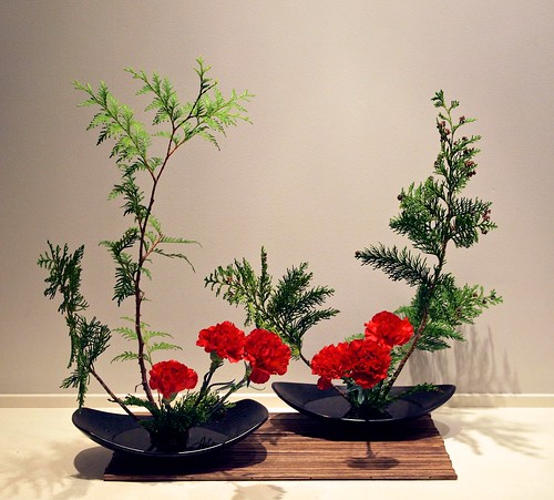 Thuja and carnations
