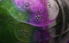 flower(0.0), leaf(0.0), water(0.0), moisture(0.0), petal(0.0), liquid bubble(1.0), dew(1.0), drop(1.0), purple(1.0), macro photography(1.0), green(1.0), close-up(1.0), circle(1.0),