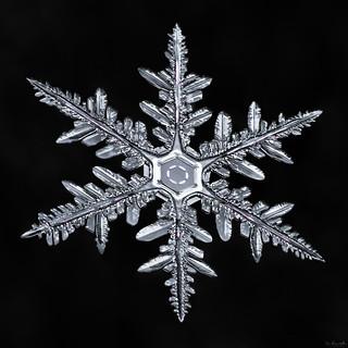 Snowflake-a-Day #44