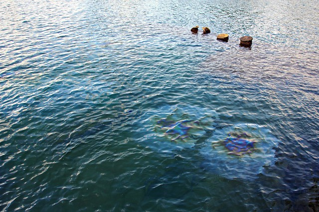 Oil in Water at USS Arizona Memorial