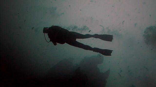 vlcsnap-2014-08-18-17h39m25s128