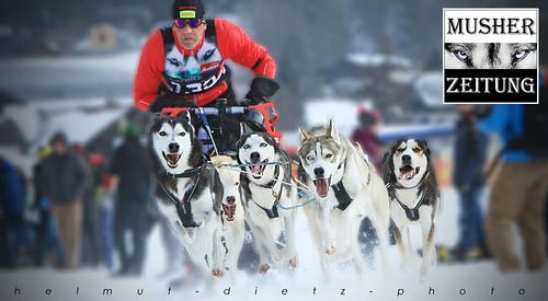 Weltmeisterschaften im Schlittenhunderennen: Andi Birkel aus BAYERN