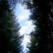 Small photo of Pian Azaria Parco Nazionale del Gran Paradiso