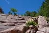 BoulderClimbHikeJune19-2014 :DSC_0299_2