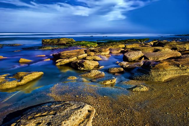 Washington Oaks State Gardens, 6400 North Oceanshore Blvd, Palm Coast, Florida, U.S.A.