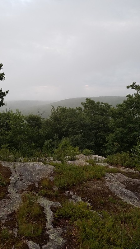 View from orange trail