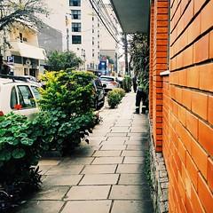 Registrando por aí..  #mobilephotography #motomaxx #streetphotography #vscocam