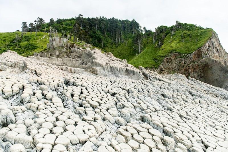 Basalt columns Kurils