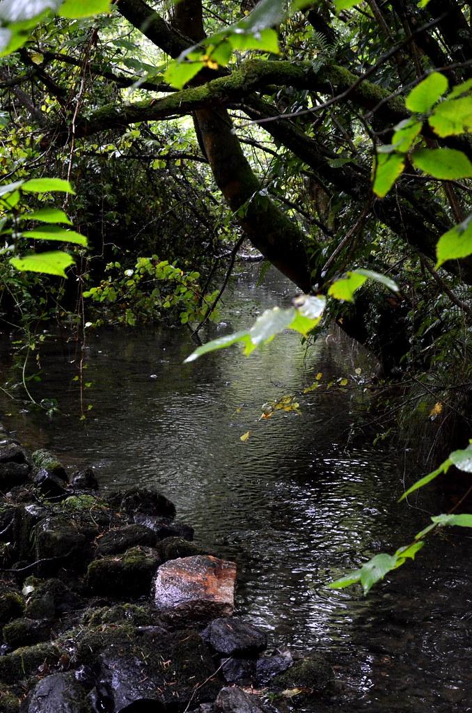 The stream 2