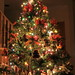 Christmas tree-Explored December 1, 2014 by RickykcWong