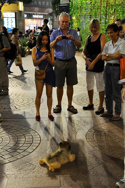 Tourist attraction at WTC Hong Kong