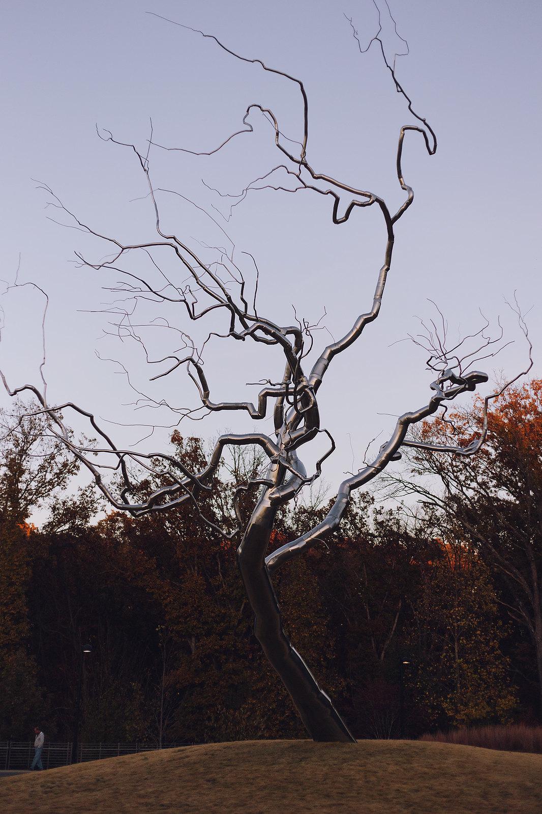 Kisiel-2014-11-08-0124