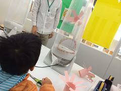 ハチラボ実験とらちゃん 2014/11