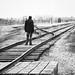 The End of the Line  -  Auschwitz - Birkenau  -  27 Jan 1945