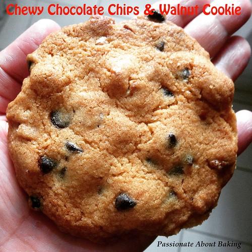 cookie_chewychowalnut02