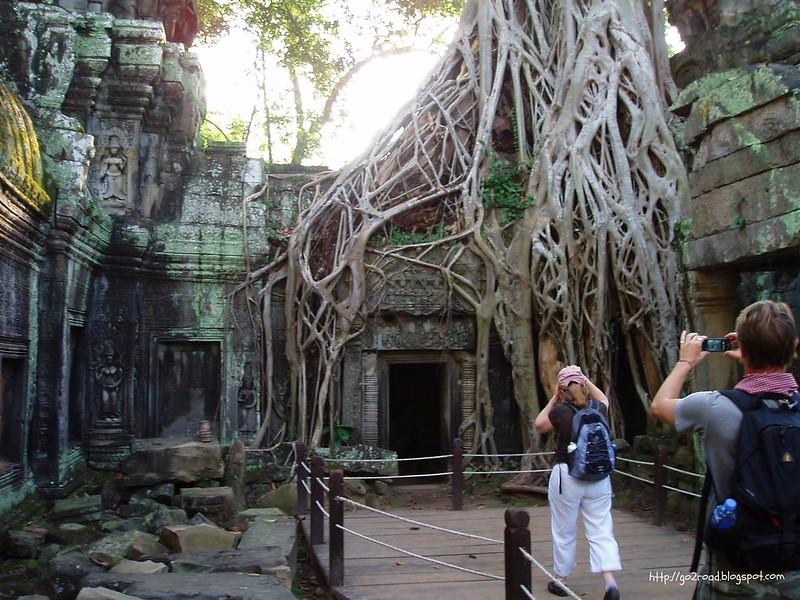 Корни Та Прома в Ангкоре