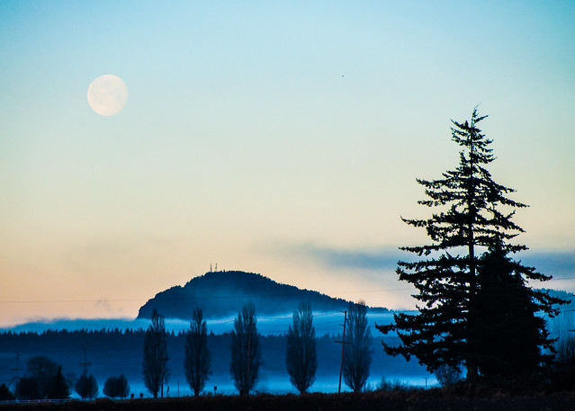 11. Moon (Morning moon over the Skagit Flats)