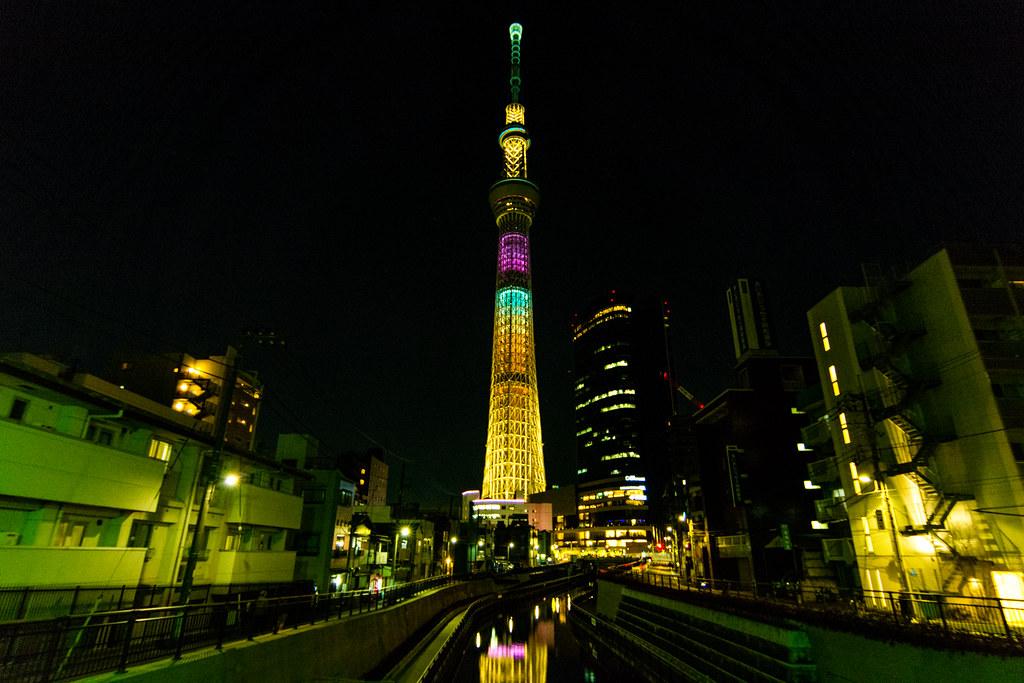 "Tokyo ""Chocolat"" Tree"