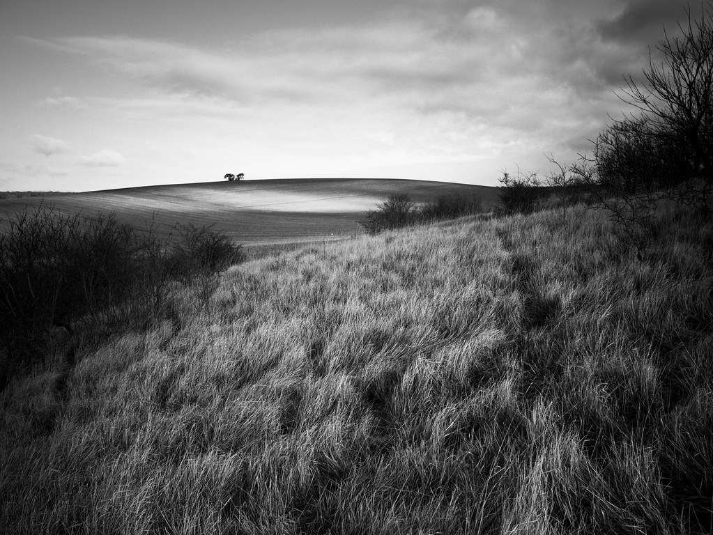 Rondeur au loin, après les herbes. 16381313141_2d54fc50f1_b
