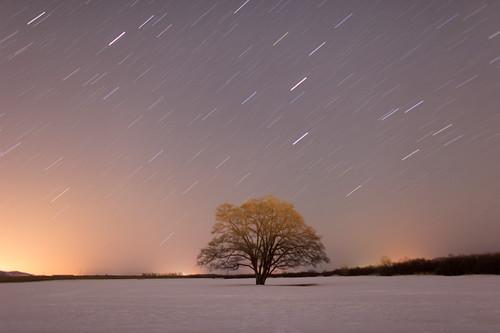 流れる星の下で