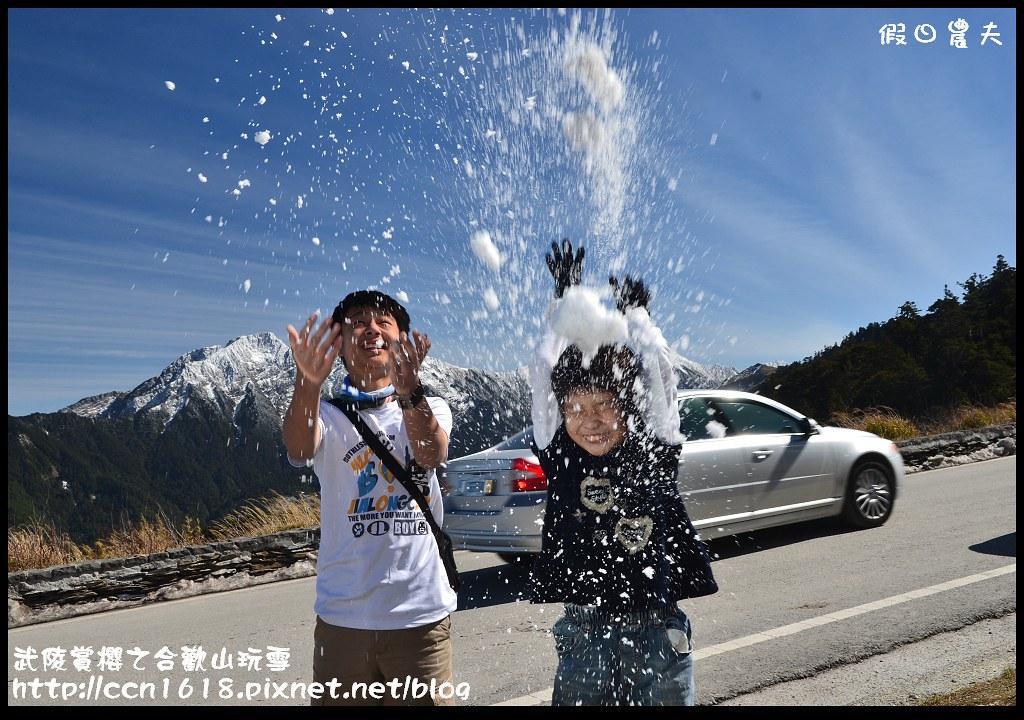武陵賞櫻之合歡山玩雪DSC_5322